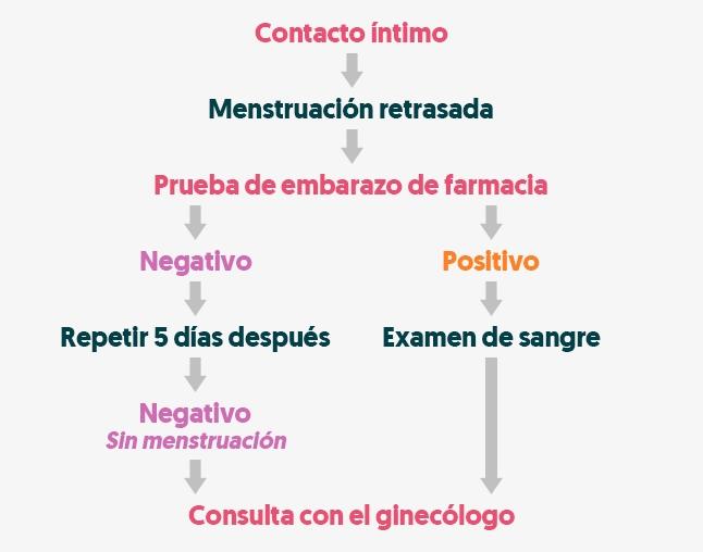signos y síntomas del embarazo