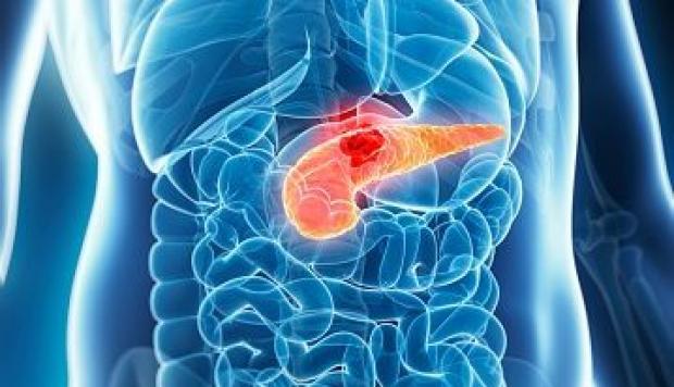cancer de pancreas sintomas finales