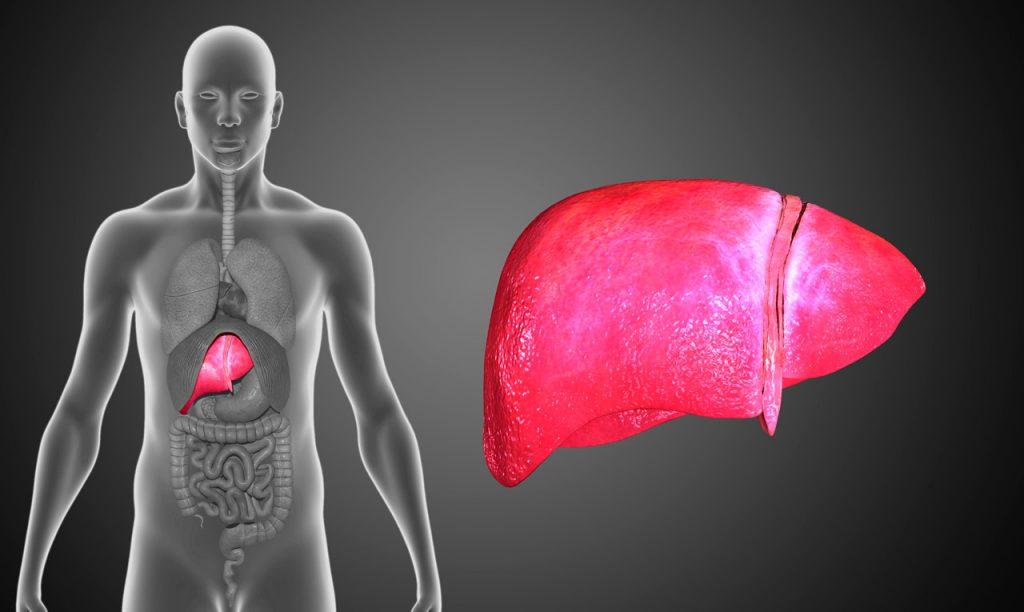 sintomas higado graso tratamiento natural