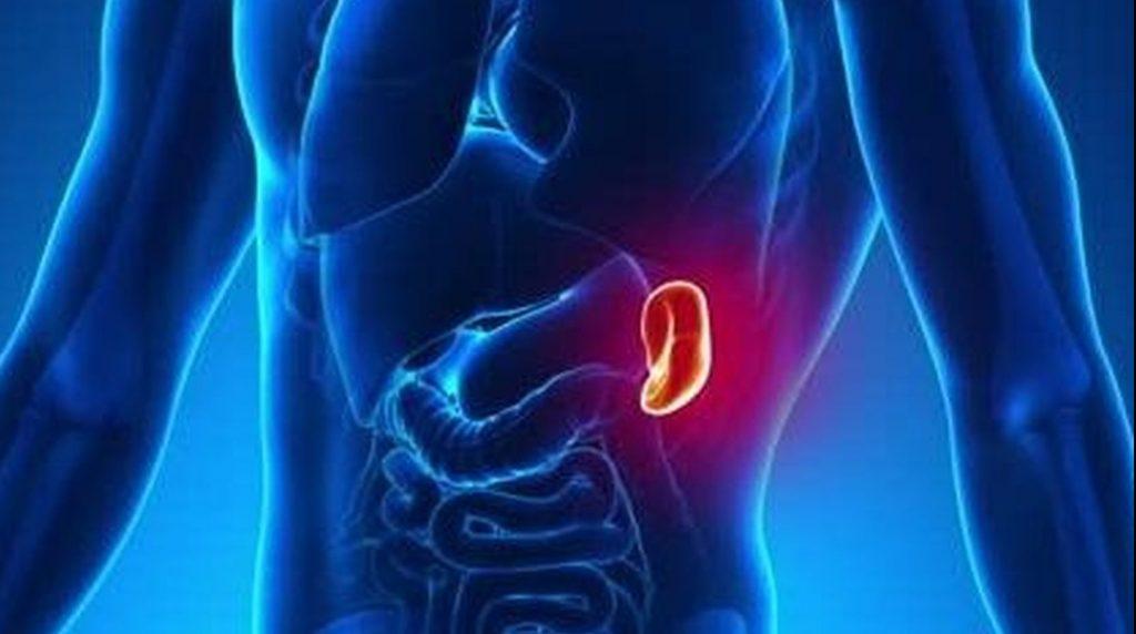 sintomas mononucleosis contagio