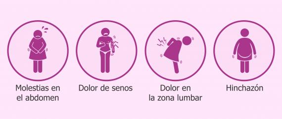 ciclo menstrual sintomas de ovulacion