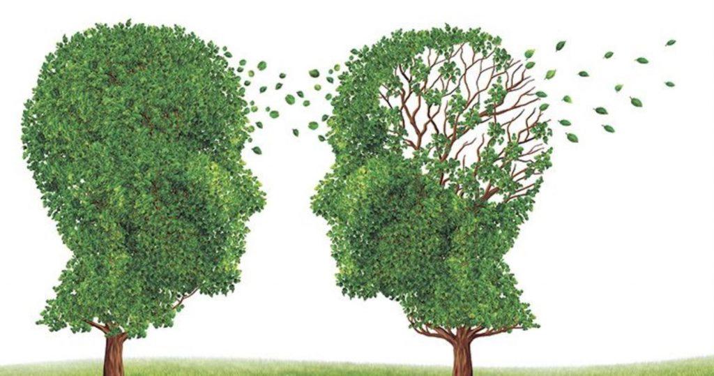 demencia senil alzheimer sintomas