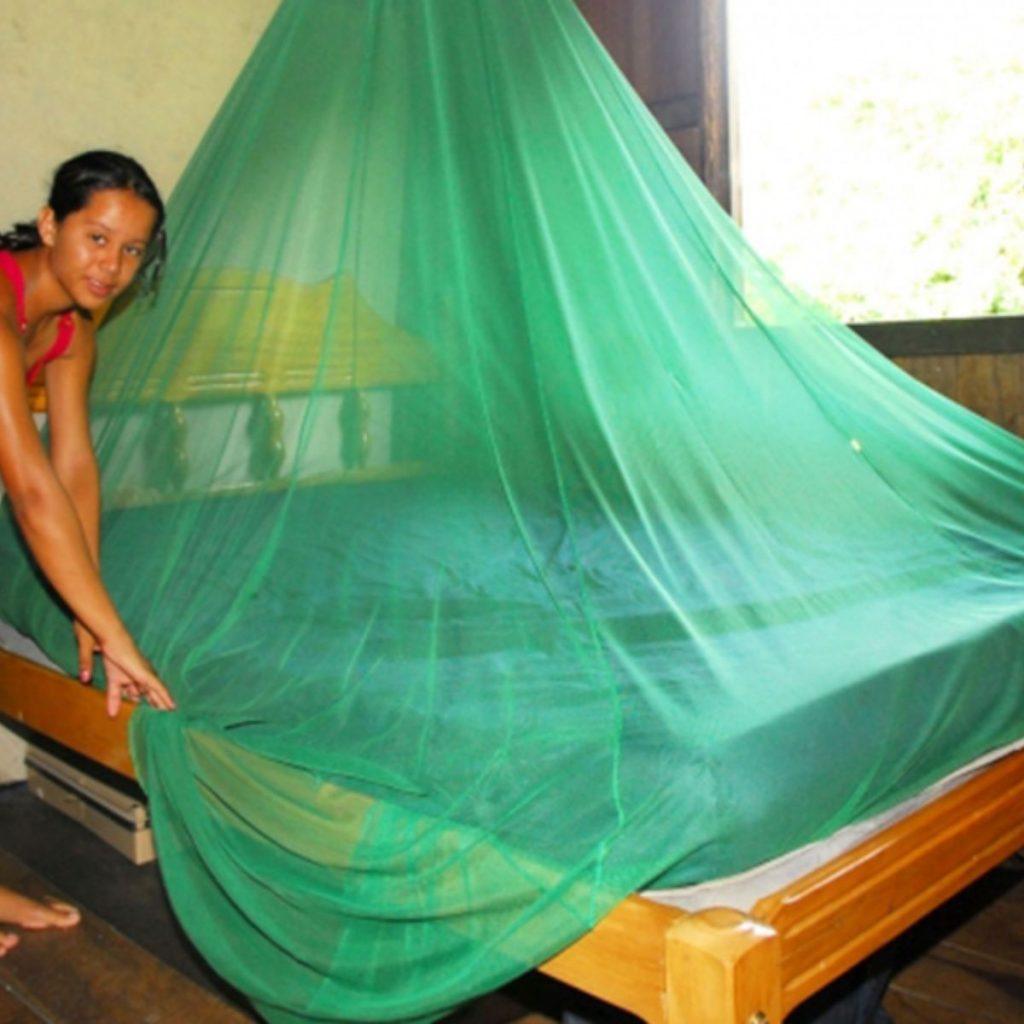 avian malaria sintomas